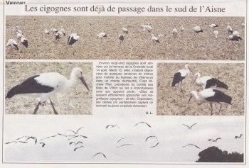 17-08-17 S33 Les cigognes de passage....(L'Axonais)
