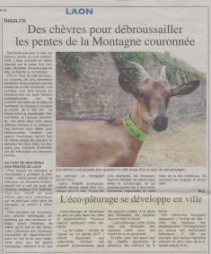 18-03-22 S 12 Laon. Des chèvres pour débroussailler....(L'Axonais)