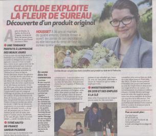 18-05-17 S 20 Housset. Clotilde exploite la fleur de sureau.....(La Thiérache )