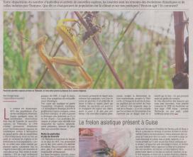 18-10-15 S 42 Les insectes,témoins des évolutions....(L'Aisne Nlle.)